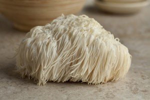 Yes, that's a mushroom. Lion's Mane is one of today's hottest breakthrough nootropics.