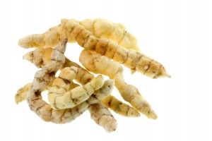 "Also known as ""Caterpillar fungus,"" Cordyceps isn't much to look at... but it might help T."