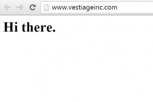 """I invested $10 million in Vestiage, Inc., and all I got was this lousy website."""
