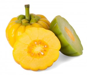 Garcinia Cambogia's thick rind is concentrated with active fat-burning HCA.