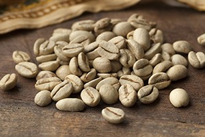 Unroasted coffee beans supply Chlorogenic Acids; roasting coffee beans destroys these active compounds.