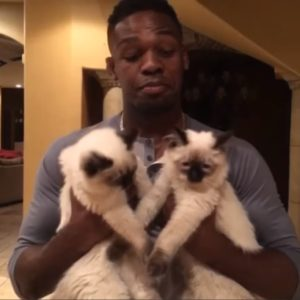 "But who could say ""no"" to a UFC champ holding fluffy cats?"