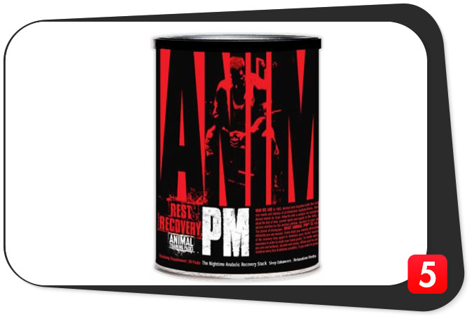 Animal PM Review - Nighttime Anabolic Recovery Vitamin Stack