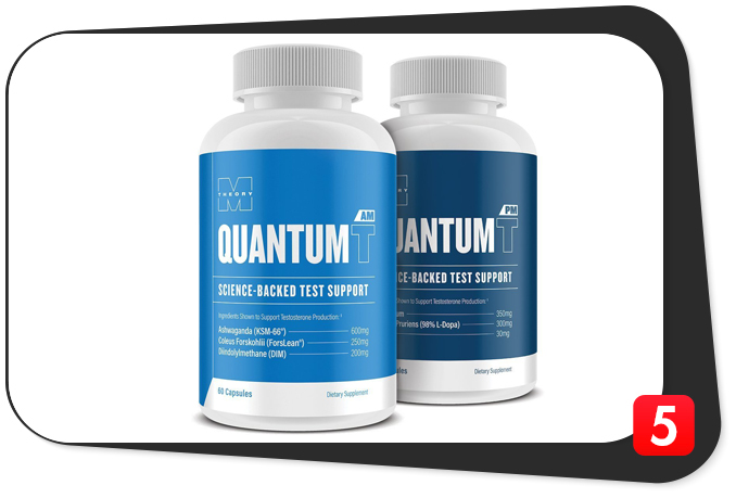 m-theory-quantum-t-review