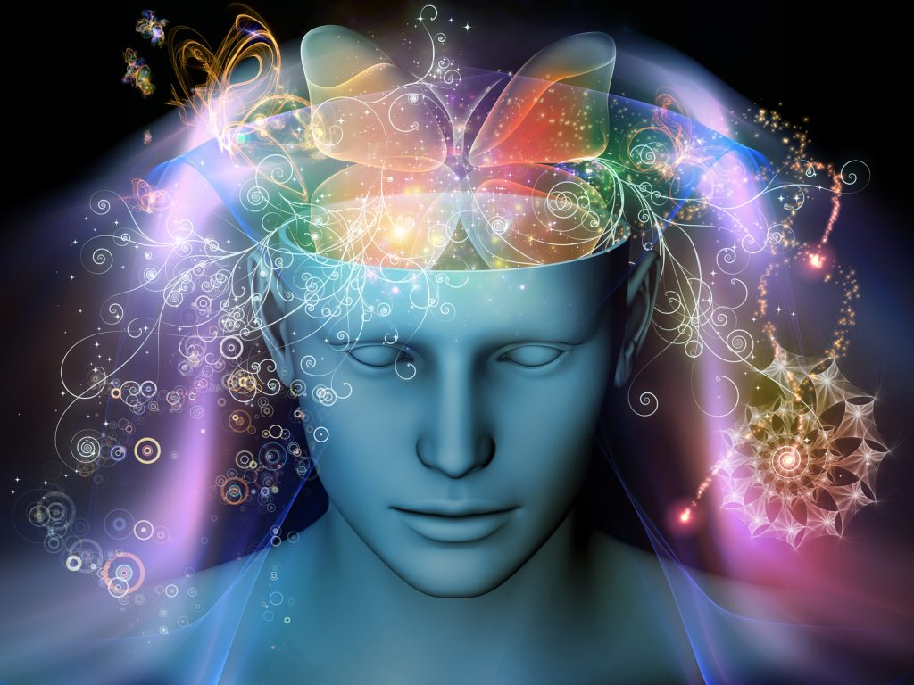Best 5 Nootropic Herbs - Most Effective Forms and Formulas to Look