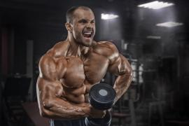 Best Protein Supplements of 2019