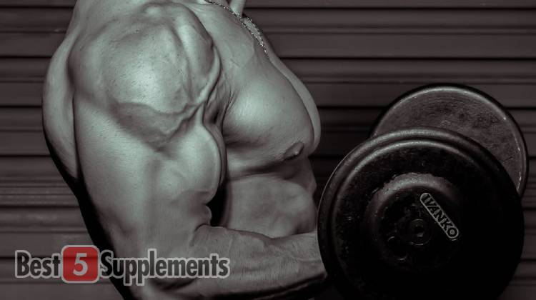 Best Supplements to get you jacked