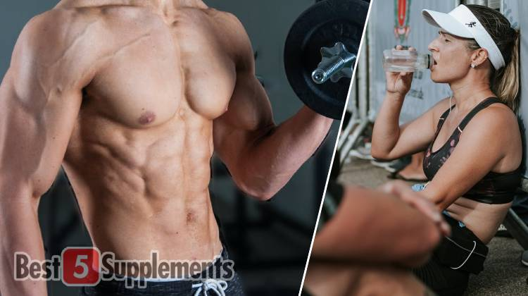 Best Weight loss and Recovery Supplements