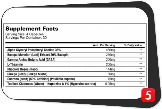 Athletic Alliance Nootropic v2.0 Ingredients Review